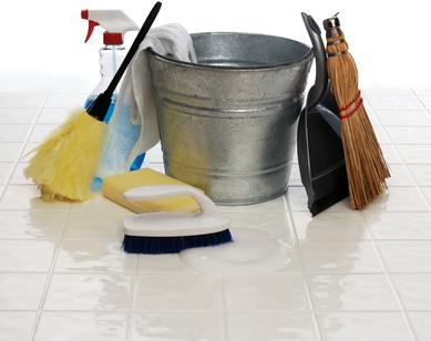 leistungen michael jauer dienstleistungen f r haus und garten fenster putzen. Black Bedroom Furniture Sets. Home Design Ideas